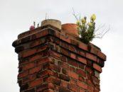 Przeglądy instalacji wentylacyjno-kominowych. Dlaczego i jak często należy je przeprowadzać?